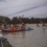 Adelaide Canoe Club trip in The Riverland